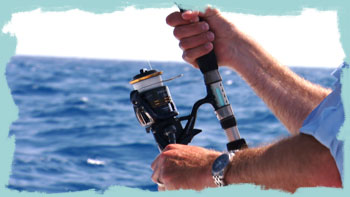 New Shimano Thunnus spinning reel in action