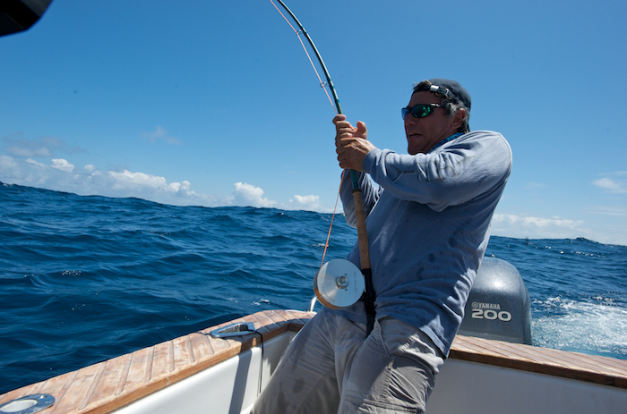 Fighting striped marlin with fly rod spanish fly tv for Fishing rod in spanish