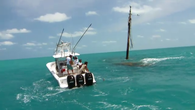Lobster fishing in key west best lobster 2017 for How s the fishing