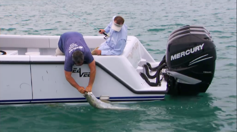 Catching a tarpon while testing new fishing tackle for Fishing tackle tester